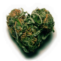 cropped-heart-shaped-bud-flavicon.png